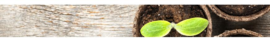 Outillage jardin - débroussailleuse - tronçonneuse - multifonctions 4 en