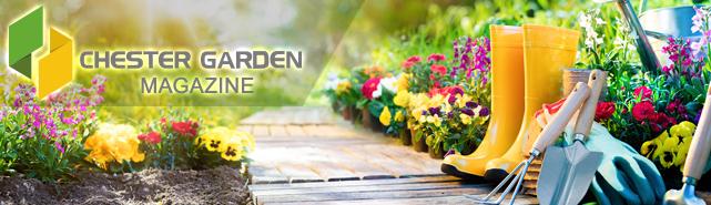 conseil de jardinage